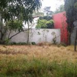 terreno margaritas02