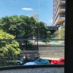 LORD BYRON_CAR.PET_11